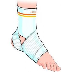 Cavigliera Legamenti